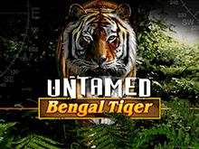 Автомат Бенгальский Тигр в лучшем казино