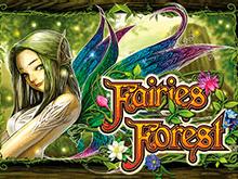 Слот Fairies Forest от популярного казино – играть онлайн